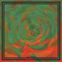 THE NIGHT BEATS – Sonic Bloom (The Reverberation AppreciationSociety)
