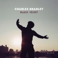 CHARLES BRADLEY – Black Velvet (Daptone-Dunham) 9/11/2018