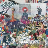 The MYSTERY LIGHTS – Too Much Tension! (Wick/Daptone Records dist Munster)10/05/2019